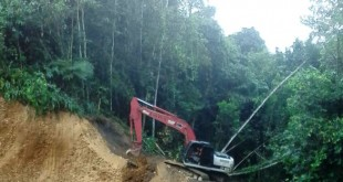 Esta vía es importante, porque por allí salen los alimentos de Arauca hacia Bucaramanga y Cúcuta.