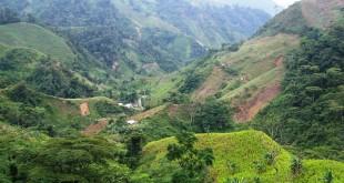 En diciembre, el Agustín Codazzi espera entregarles a los municipios de El Catatumbo los resultados del estudio de suelos en las zonas productivas. /  Foto: ARCHIVO